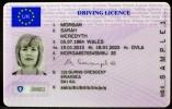 Единые водительские права в Евросоюзе