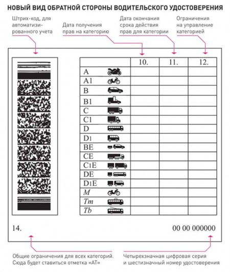 новая форма водительского удостоверения