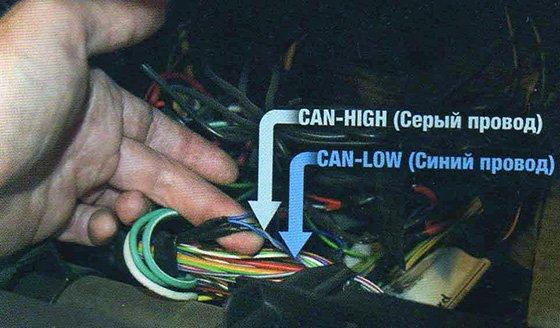 как найти CAN-шину