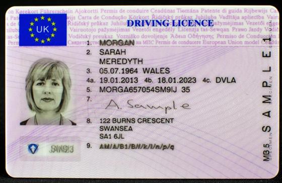 Водительское удостоверение в Евросоюзе